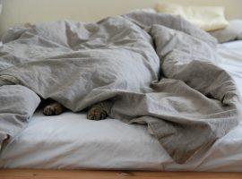 So bestimmen Sie die optimale Wärmeklasse für ihre Decke